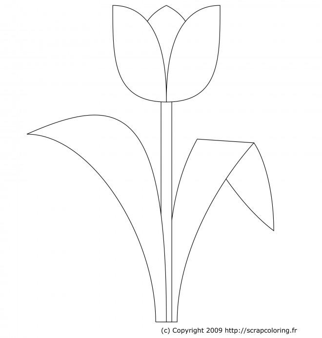 Coloriage et dessins gratuits Tulipe stylisée à imprimer