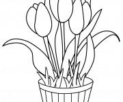 Coloriage et dessins gratuit Tulipes à décorer à imprimer
