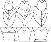 Coloriage et dessins gratuit Tulipes et Pots à imprimer