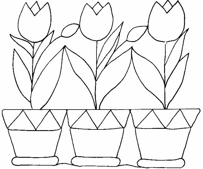 Coloriage et dessins gratuits Tulipes et Pots à imprimer