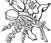Coloriage Tulipes et Roses