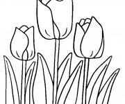 Coloriage Tulipes magnifiques en ligne