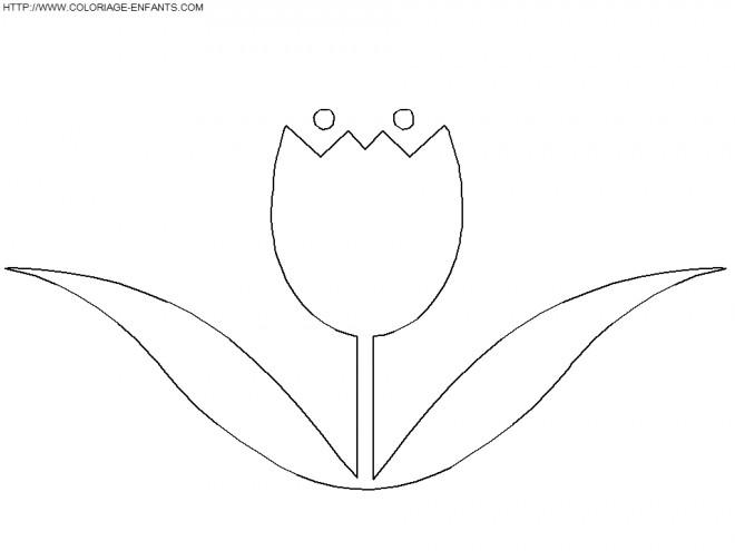 Coloriage et dessins gratuits Une Petite Tulipe à imprimer