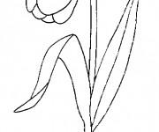 Coloriage et dessins gratuit Une Tulipe agréable à imprimer