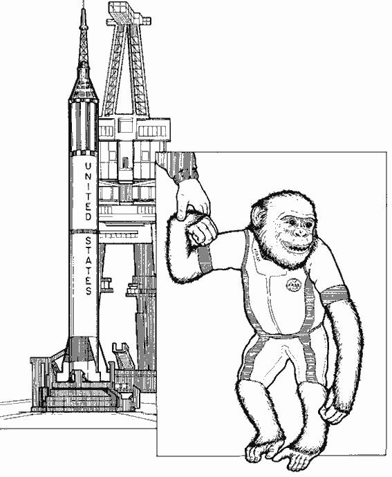 Coloriage et dessins gratuits Le singe Cosmonaute à imprimer