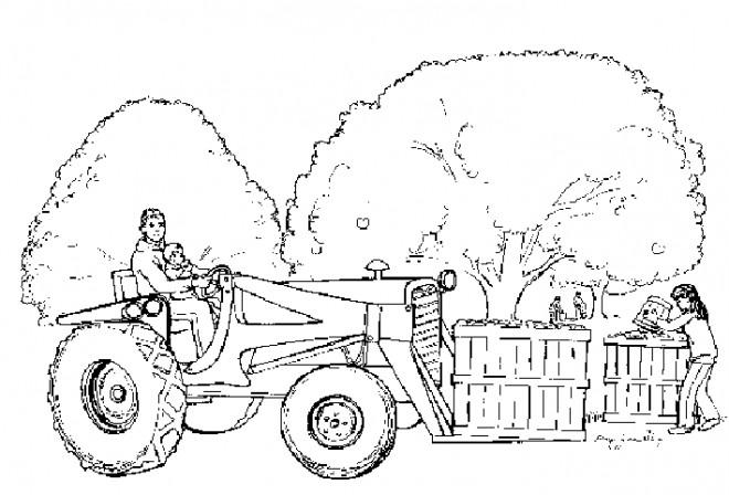 Coloriage et dessins gratuits Fermier avec son fils sur tracteur à imprimer