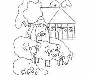 Coloriage Un berger et ses moutons