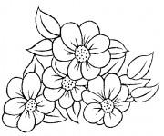 Coloriage et dessins gratuit Fleuriste 13 à imprimer
