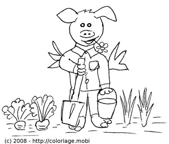 Coloriage cochon jardinier dessin gratuit imprimer - Dessin de potager ...