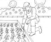 Coloriage Jardinier dans son petit jardin