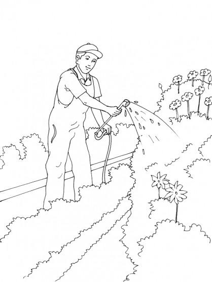 Coloriage jardinier et arrosage de jardin dessin gratuit for Dessiner jardin en ligne