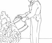 Coloriage et dessins gratuit Jardinier et fleurs en ligne à imprimer