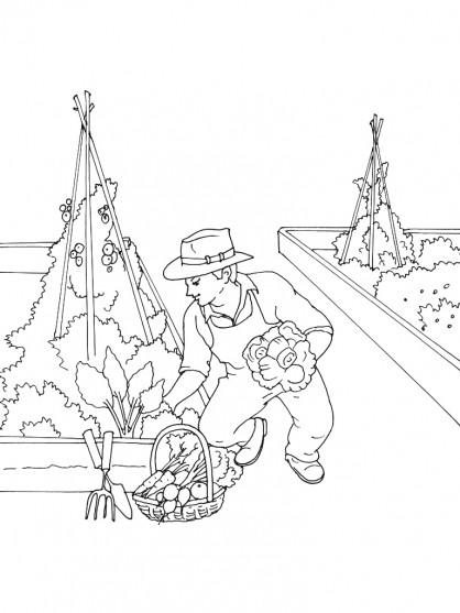 Coloriage et dessins gratuits Jardinier et légumes en ligne à imprimer