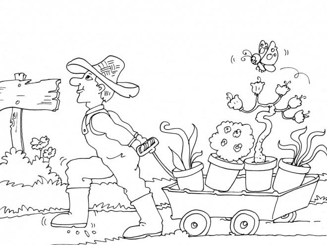 Coloriage et dessins gratuits Jardinier et ses plantes à imprimer
