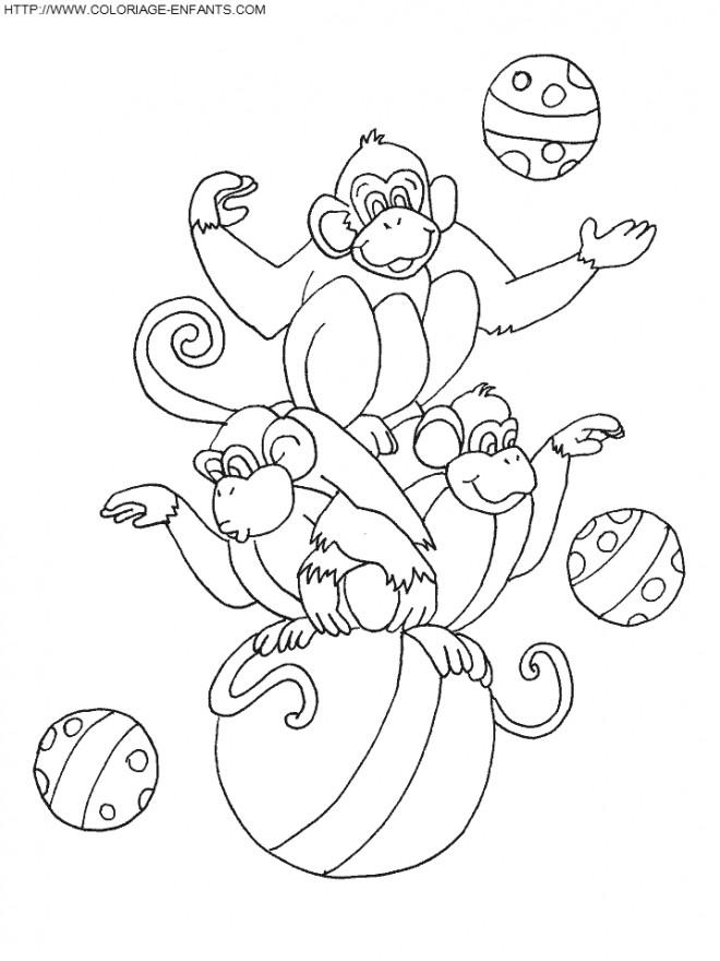 Coloriage et dessins gratuits Jongleur Singe à imprimer
