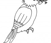 Coloriage Oiseau Pêcheur