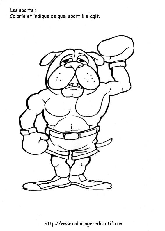 Coloriage et dessins gratuits Chien Boxeur à imprimer