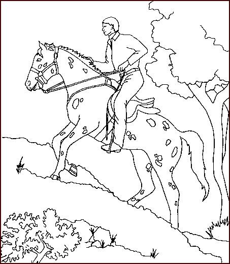 Coloriage Cheval Indien.Coloriage Cavalier Et Cheval Indien Dessin Gratuit A Imprimer