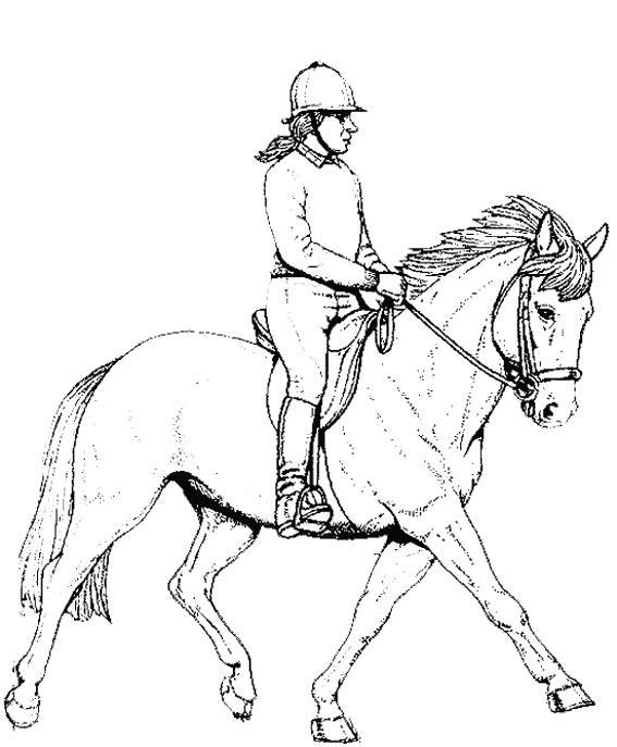 Coloriage et dessins gratuits Cavalier sur Cheval à imprimer