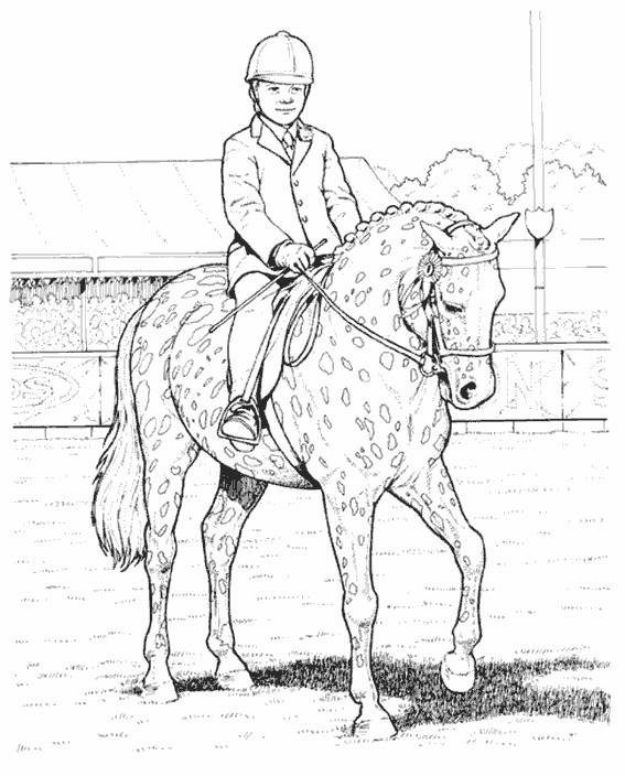 Coloriage et dessins gratuits Cavalier sur son cheval taché à imprimer