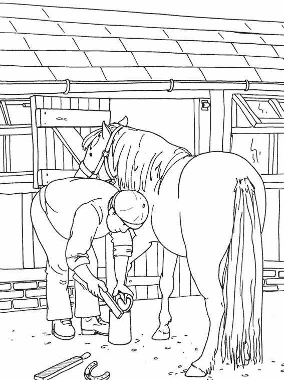 Coloriage entretien des chevaux dessin gratuit imprimer - Coloriage de cavaliere ...