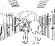 Coloriage dessin  Equitation 7