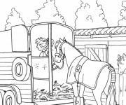 Coloriage dessin  Equitation 8