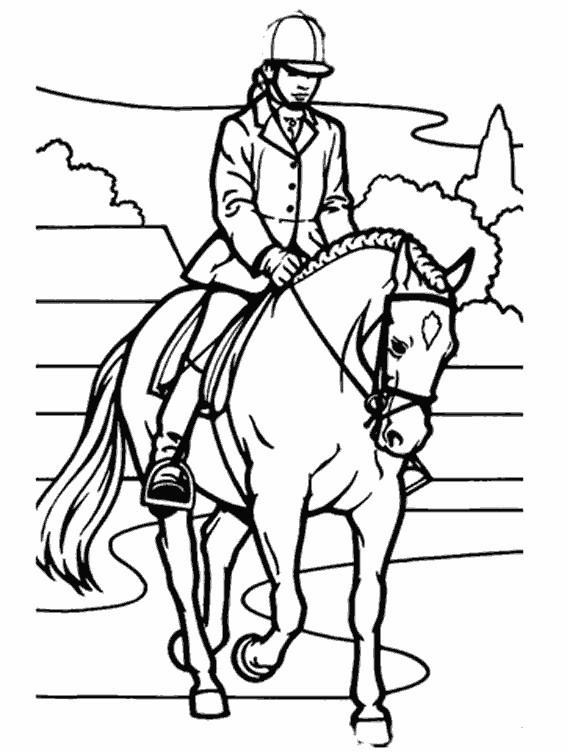 Coloriage quitation vecteur dessin gratuit imprimer - Dessins de chevaux a imprimer ...