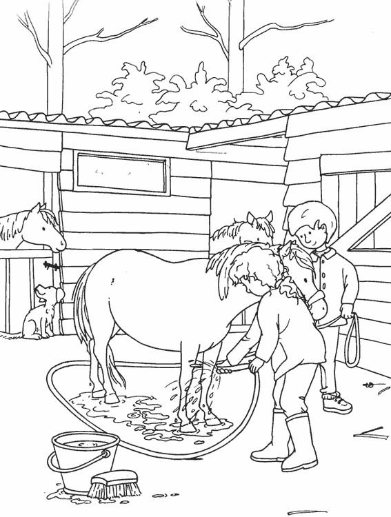 Coloriage et dessins gratuits Le Petit Cheval se baigne à imprimer