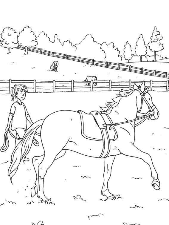 Coloriage Un beau cheval s'entraîne dessin gratuit à imprimer