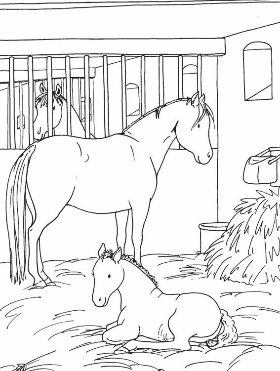 Coloriage Un Cheval et son petit dans le stable dessin ...