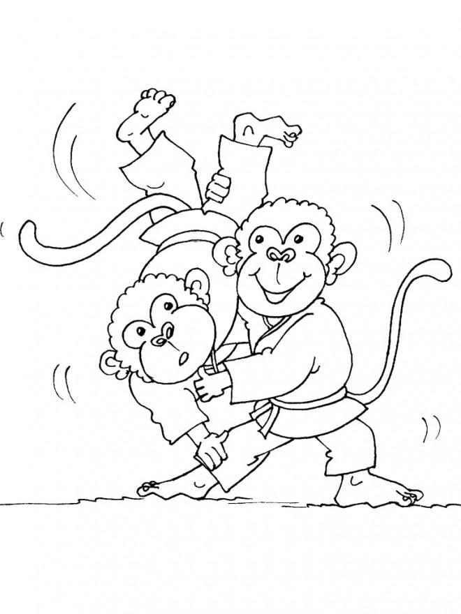 Coloriage et dessins gratuits Singes Judoka à imprimer