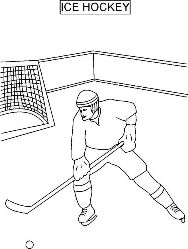 Coloriage et dessins gratuits Hockey sur glace maternelle à imprimer