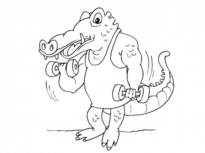 Coloriage et dessins gratuits Crocodile musclé à imprimer