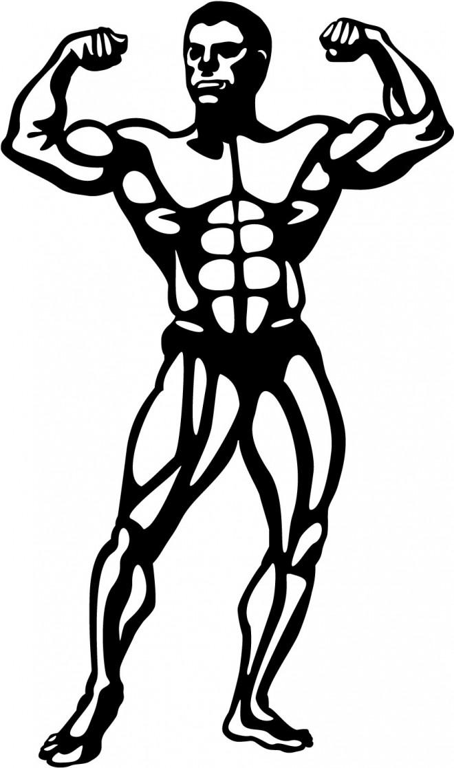 Coloriage et dessins gratuits Musculation en couleur à imprimer