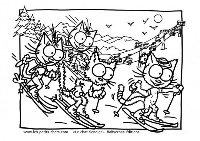 Coloriage et dessins gratuits Les Chats font du Ski à imprimer