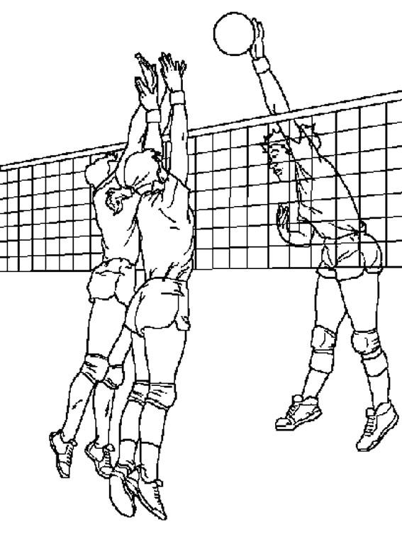 Coloriage et dessins gratuits Filet de Volleyball à imprimer