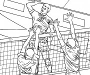 Coloriage Volleyball professionnel