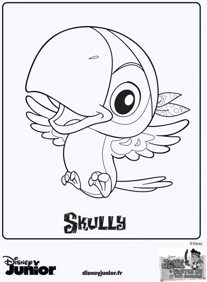 Coloriage jack et les pirates skully dessin gratuit imprimer - Coloriage jack le pirate ...