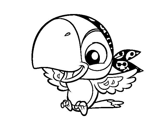 Coloriage le perroquet pirate rigolo dessin gratuit imprimer - Jack et le pirate ...