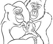 Coloriage dessin  King Kong 11
