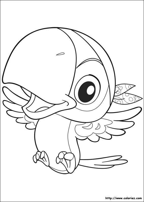 Coloriage Le Perroquet de Pirate dessin gratuit à imprimer