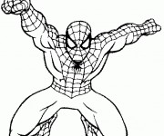 Coloriage dessin  Spiderman 13