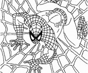 Coloriage Spiderman couleur