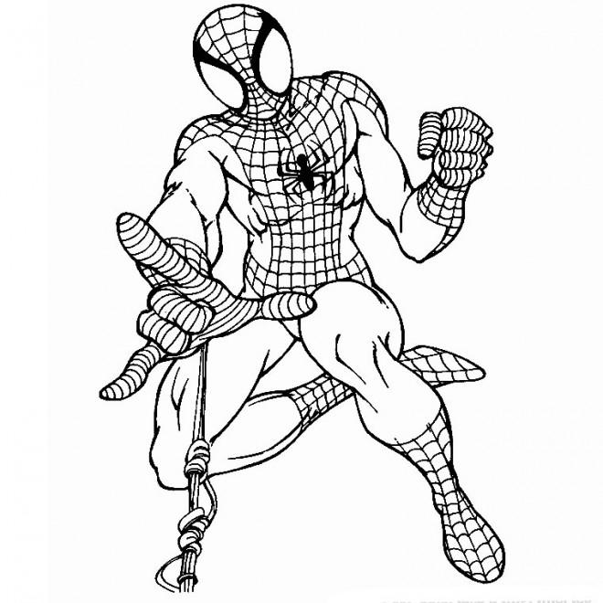 Coloriage Spiderman En Noir Et Blanc Dessin Gratuit A Imprimer