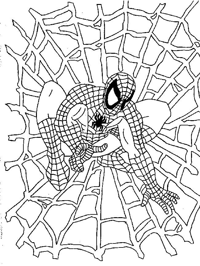 Coloriage Spiderman et Toile dessin gratuit à imprimer