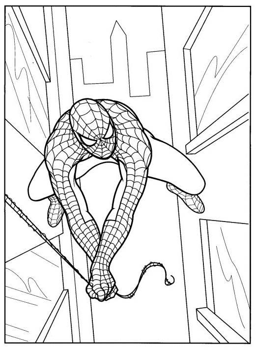 Coloriage et dessins gratuits Spiderman L'Homme-araignée entre les gratte-ciel à imprimer