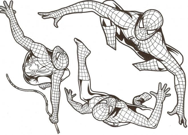 Coloriage spiderman stylis dessin gratuit imprimer - Coloriage spiderman portrait ...