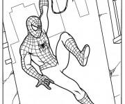 Coloriage Spiderman sur Les Murs