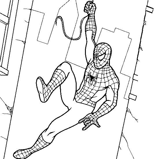 Coloriage Spiderman Le Hero Protecteur Dessin Gratuit A Imprimer